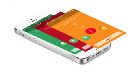 LifeFone, Mobile Alert: Review