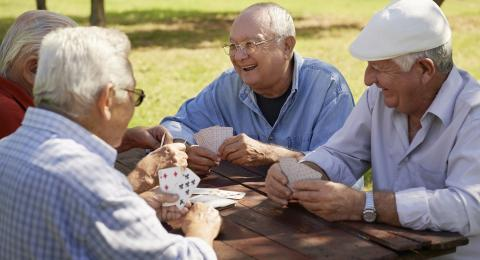 Socialization and Interest Groups