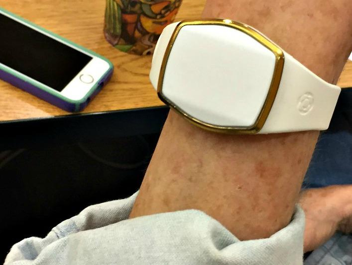 SequiasSF explorers check out the Lively Wearable