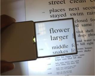 Pocket Magnifier: example 1