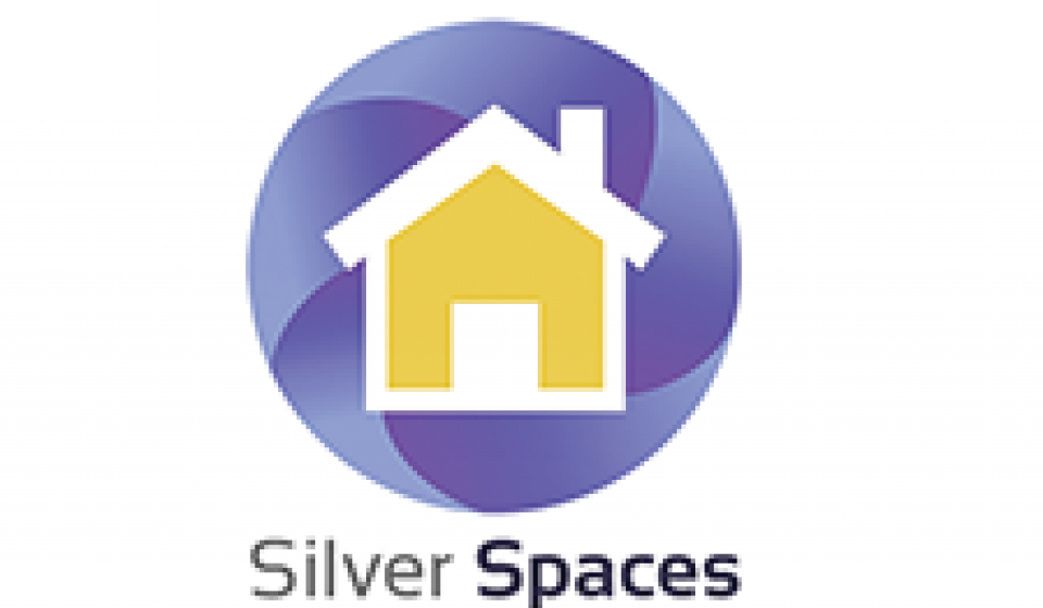 Silver Spaces