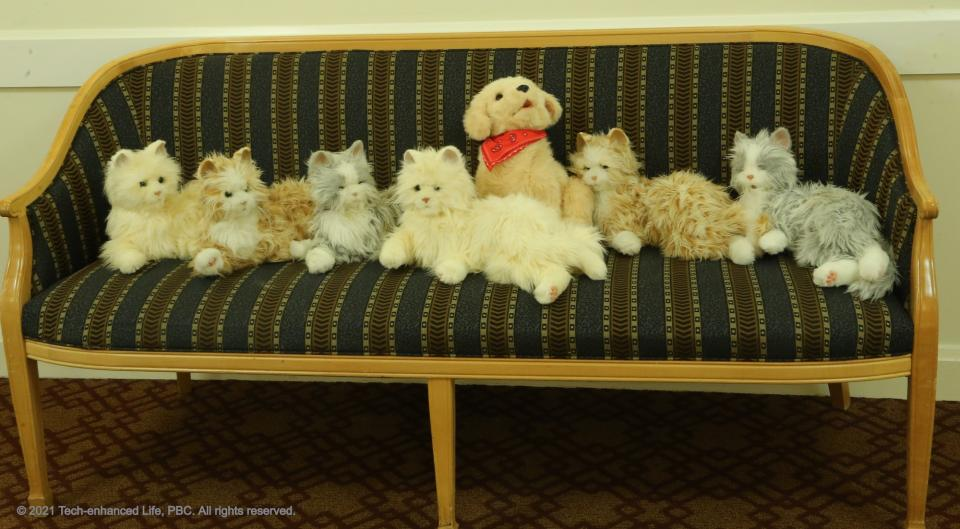 Robotic Pets ready for patients
